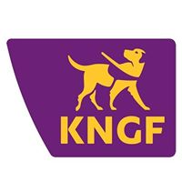 referentie logo KNGF, KNGF, pompoenmannetjes